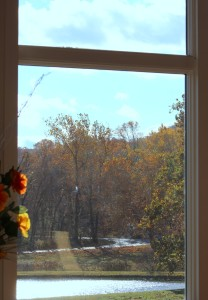 VMC_Window_View IMG_0204_web